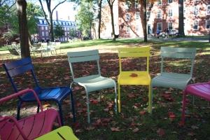 Harvard, ritorno sui banchi (ops sedie) di scuola